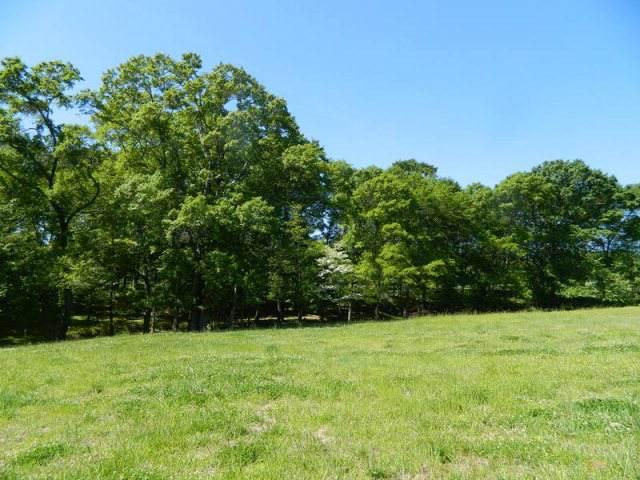 0 Bowen Farm Road - Photo 1