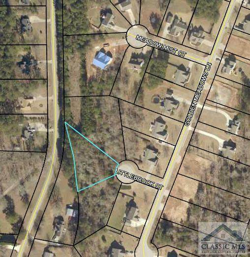 1710 Little Brook Court, Loganville, GA 30052 (MLS #983520) :: Signature Real Estate of Athens