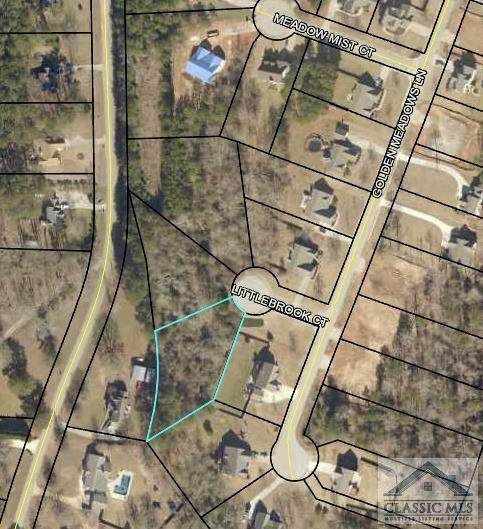 1706 Little Brook Court, Loganville, GA 30052 (MLS #983521) :: Signature Real Estate of Athens