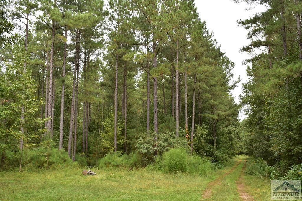 Lot 3 Wolfskin Road - Photo 1