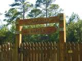 L12  B23 Royal Pine Lane - Photo 26