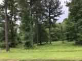 1146 Tanyard Creek Drive - Photo 1