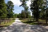 5349 Magnolia Drive - Photo 4