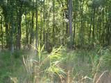0 Reynolds Pond Road - Photo 9