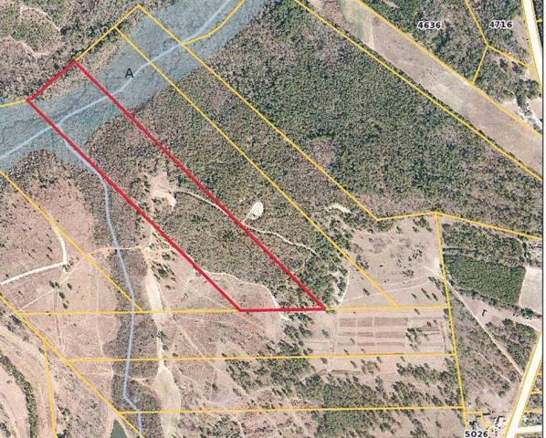 Lot 7 River Road, Waynesboro, GA 30830 (MLS #424967) :: Southeastern Residential