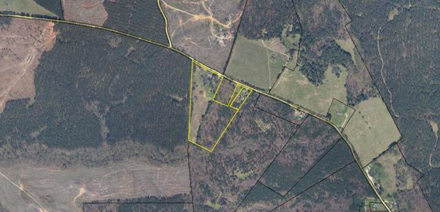 17.19 Ac Glenn Road, RAYLE, GA 30660 (MLS #426267) :: Melton Realty Partners