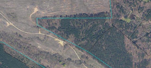 22 AC. Glenn Road, RAYLE, GA 30660 (MLS #426268) :: Shannon Rollings Real Estate