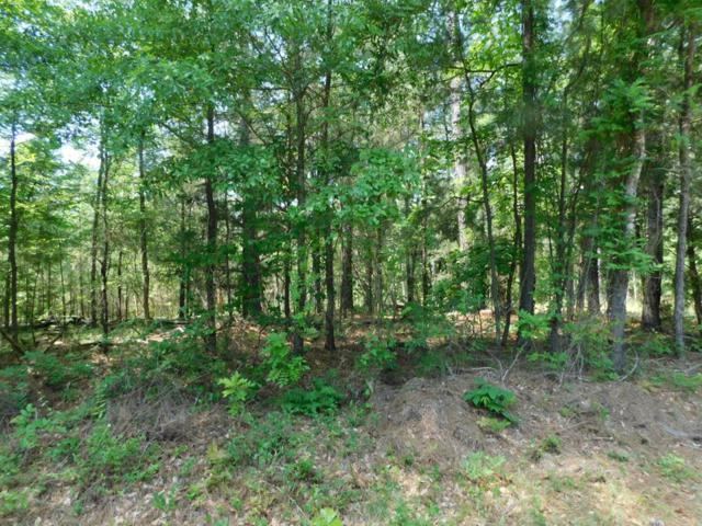 0 Anthony Drive, Elberton, GA 30635 (MLS #426865) :: Shannon Rollings Real Estate