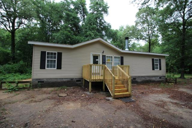 4931 Horseshoe Circle, Hephzibah, GA 30815 (MLS #427492) :: Shannon Rollings Real Estate