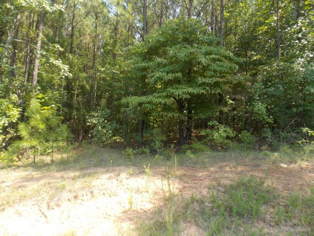 1235 Winding Ridge Drive, Lincolnton, GA 30817 (MLS #428766) :: Shannon Rollings Real Estate