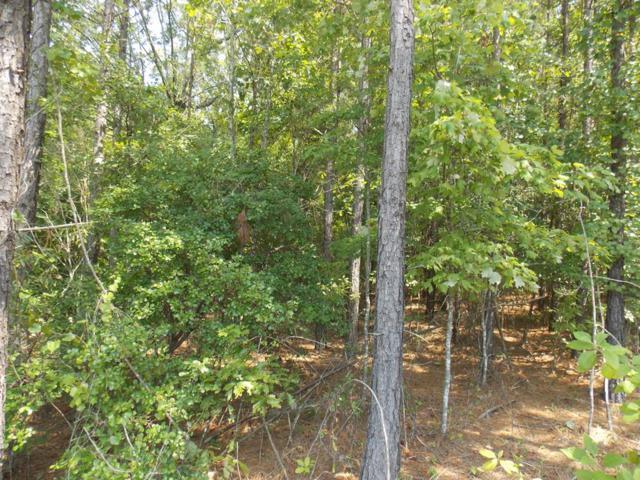 1377 Winding Ridge Drive, Lincolnton, GA 30817 (MLS #428785) :: Shannon Rollings Real Estate