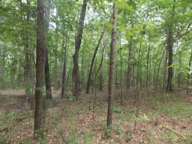 1211 Winding Ridge Drive, Lincolnton, GA 30817 (MLS #428790) :: For Sale By Joe | Meybohm Real Estate