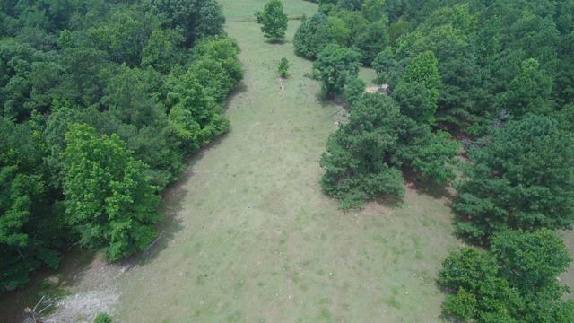 00 Ray Owens Road, Appling, GA 30802 (MLS #429004) :: Natalie Poteete Team