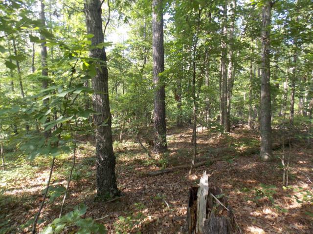 1 Lake Drive, Lincolnton, GA 30817 (MLS #429532) :: Shannon Rollings Real Estate
