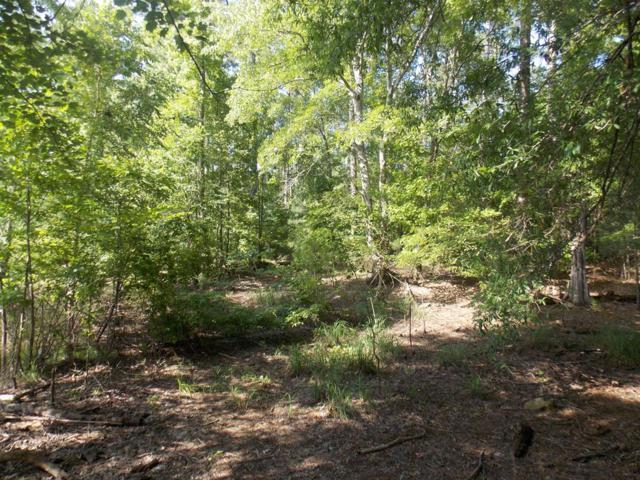 2 Lake Drive, Lincolnton, GA 30817 (MLS #429534) :: Shannon Rollings Real Estate