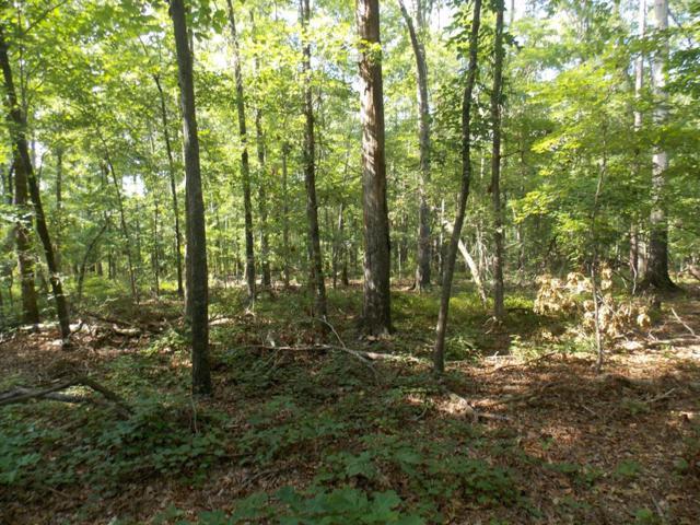 3 Lake Drive, Lincolnton, GA 30817 (MLS #429536) :: Shannon Rollings Real Estate