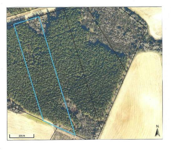 000 Bailey Road, Waynesboro, GA 30830 (MLS #431256) :: Shannon Rollings Real Estate