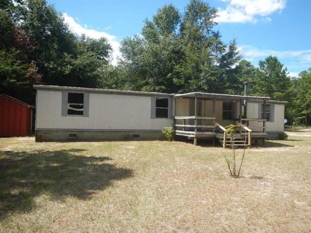 1439 Hephzibah Mcbean Road, Hephzibah, GA 30815 (MLS #432448) :: RE/MAX River Realty