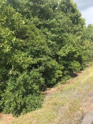 Lot 10 Legion Road, Warrenville, SC 29851 (MLS #432723) :: Melton Realty Partners