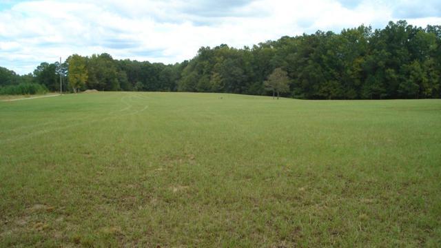 1270 Greenbriar Drive, Lincolnton, GA 30817 (MLS #432766) :: Shannon Rollings Real Estate