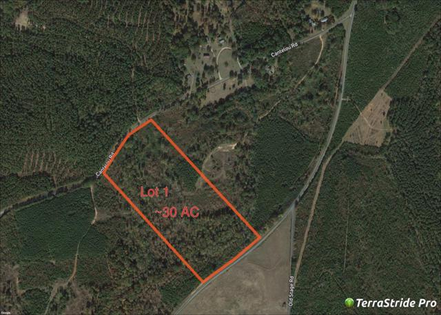 1979 Sweetwater Road, Edgefield County, SC 29824 (MLS #433051) :: RE/MAX River Realty