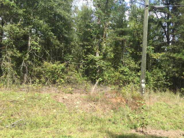 0 Pine Needle Road, Hephzibah, GA 30815 (MLS #433310) :: Greg Oldham Homes