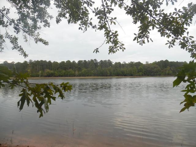 Lot 59 Eagle Point, Lincolnton, GA 30817 (MLS #433353) :: Shannon Rollings Real Estate