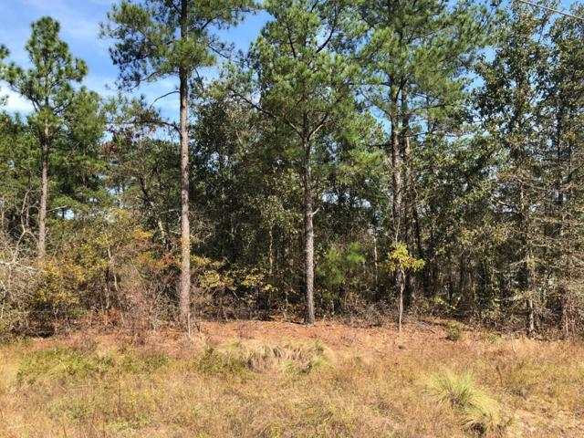 LT 11 Whaley Pond Road, North Augusta, SC 29829 (MLS #433619) :: Melton Realty Partners
