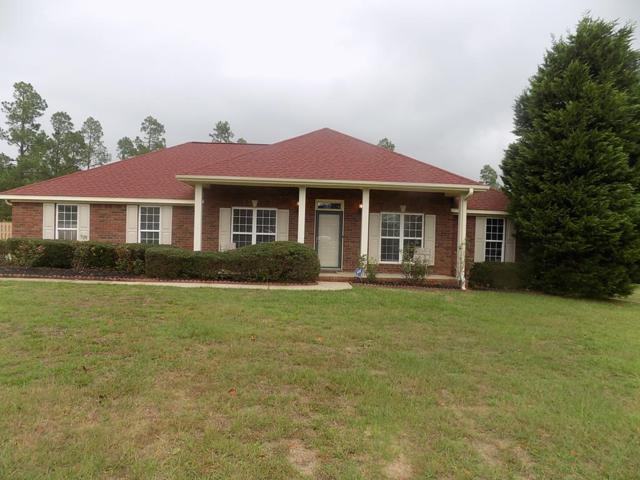 1225 Oak Ridge Plantation Road, Hephzibah, GA 30815 (MLS #433712) :: Shannon Rollings Real Estate