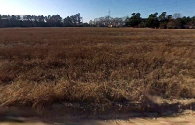 3447 Patron Drive, Grovetown, GA 30809 (MLS #434121) :: Shannon Rollings Real Estate