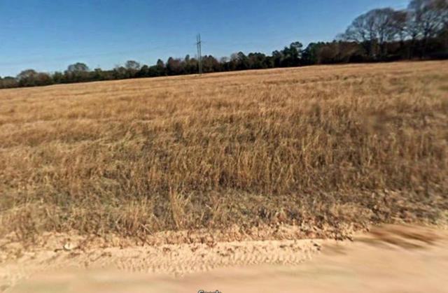 3448 Patron Drive, Grovetown, GA 30809 (MLS #434129) :: Shannon Rollings Real Estate