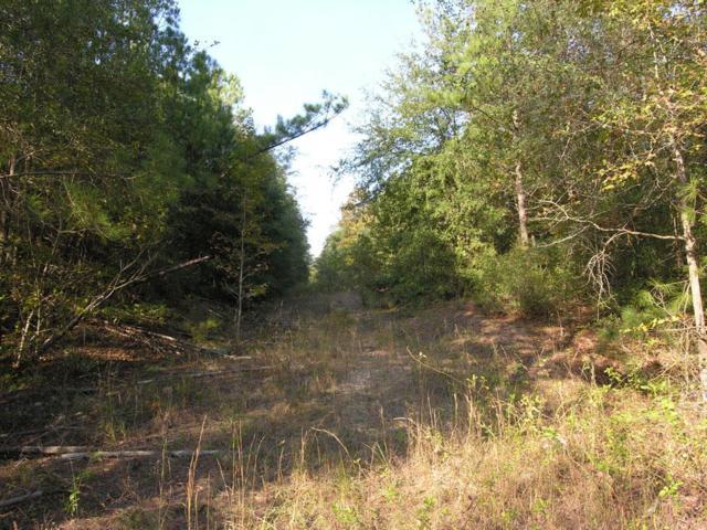 na NA Perkins Mill Road Na, Keysville, GA 30816 (MLS #434194) :: Melton Realty Partners