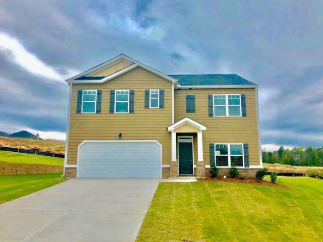 1205 Eldrick Lane, Grovetown, GA 30813 (MLS #434555) :: REMAX Reinvented | Natalie Poteete Team