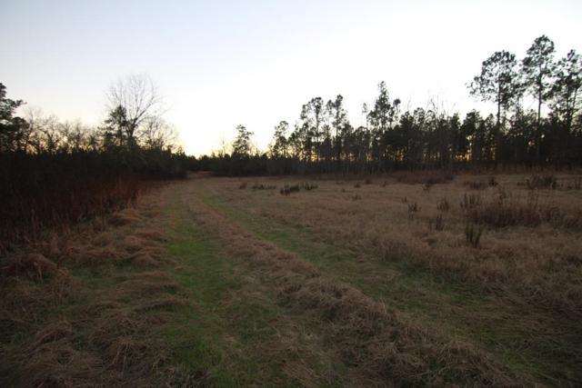 2436 Highway 88, Hephzibah, GA 30815 (MLS #435882) :: Shannon Rollings Real Estate
