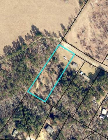 439 Lazy Acres Drive, Hephzibah, GA 30815 (MLS #436031) :: Young & Partners