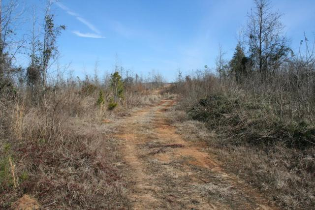 Lot 3 Hwy 79, Lincolnton, GA 30817 (MLS #436955) :: REMAX Reinvented | Natalie Poteete Team