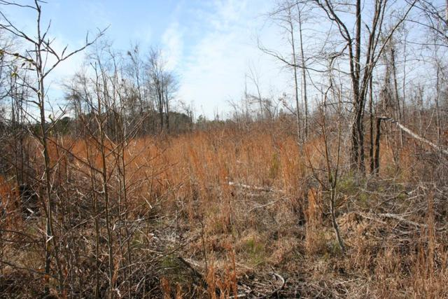 Lot 4 Hwy 79, Lincolnton, GA 30817 (MLS #436957) :: Melton Realty Partners