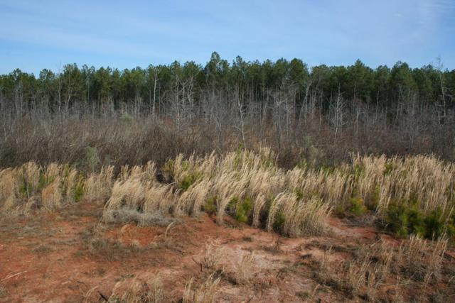 Lot 5 Hwy 79, Lincolnton, GA 30817 (MLS #436960) :: Melton Realty Partners