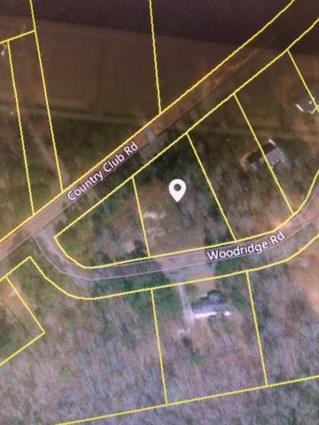0 Woodridge Road, Edgefield, SC 29824 (MLS #437038) :: RE/MAX River Realty