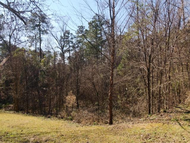 4858 Birdwood Court, Evans, GA 30809 (MLS #437056) :: Shannon Rollings Real Estate