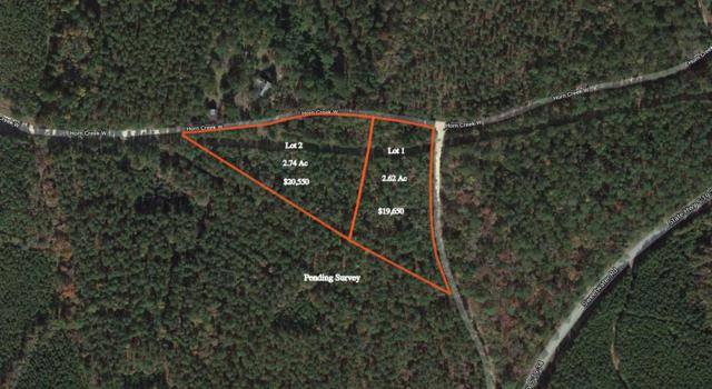 50 Horn Creek Court W, Edgefield County, SC 29824 (MLS #437221) :: RE/MAX River Realty