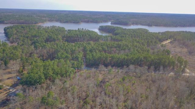 Lot 16 Indian Road, Lincolnton, GA 30871 (MLS #437571) :: Shannon Rollings Real Estate