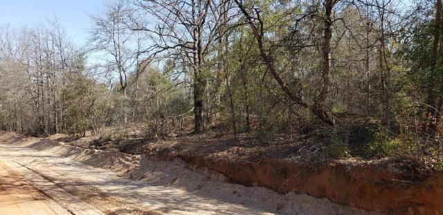 1054 Mcnutt Road, Augusta, GA 30906 (MLS #438559) :: Shannon Rollings Real Estate