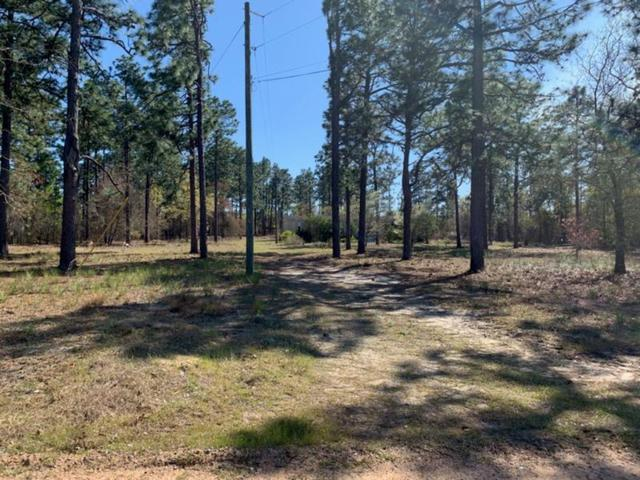 1026 Tree Haven Road, Blythe, GA 30805 (MLS #439159) :: Shannon Rollings Real Estate