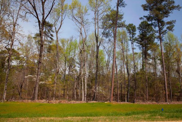 805 Little River Lane, Appling, GA 30802 (MLS #439304) :: Shannon Rollings Real Estate