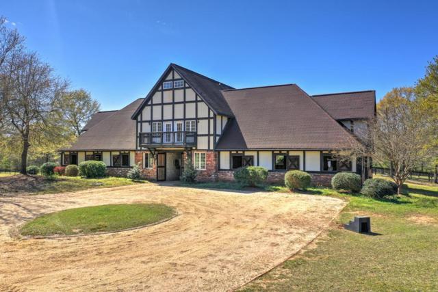 201 Lewis Lane, Aiken, SC 29803 (MLS #439427) :: Shannon Rollings Real Estate