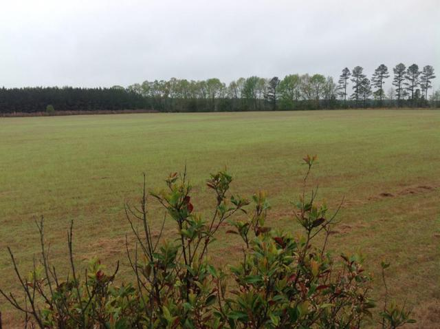 TBD South Dixie Road, Wagener, SC 29164 (MLS #439615) :: Shannon Rollings Real Estate