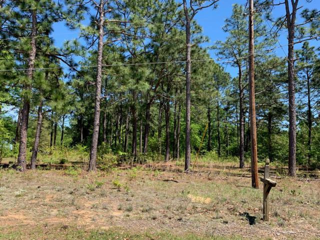 4126 Wallie Drive, Augusta, GA 30906 (MLS #439982) :: Meybohm Real Estate
