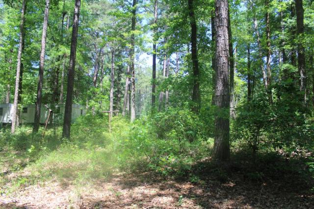 00 Eagle Pass Lane, Hephzibah, GA 30815 (MLS #441285) :: Melton Realty Partners