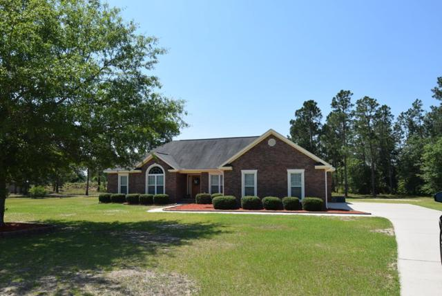1235 Oakridge Plantation Road, Hephzibah, GA 30815 (MLS #441498) :: RE/MAX River Realty
